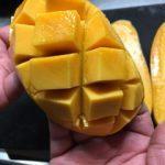 【マンゴーの切り方】お店みたいに綺麗にカットしたい